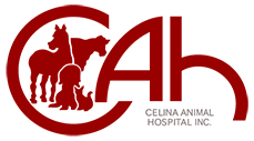 Celina Animal Hospital